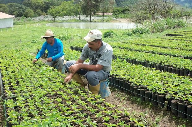 Uso racional y transparente de los ingresos para 2017, plantea Bolaños Aguilar; dinero extra, a sectores prioritarios