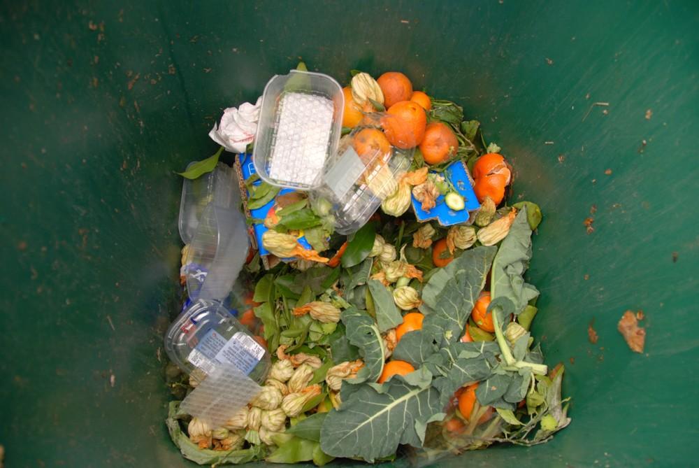 Senado pide medidas para reducir el desperdicio de alimentos en mercados públicos