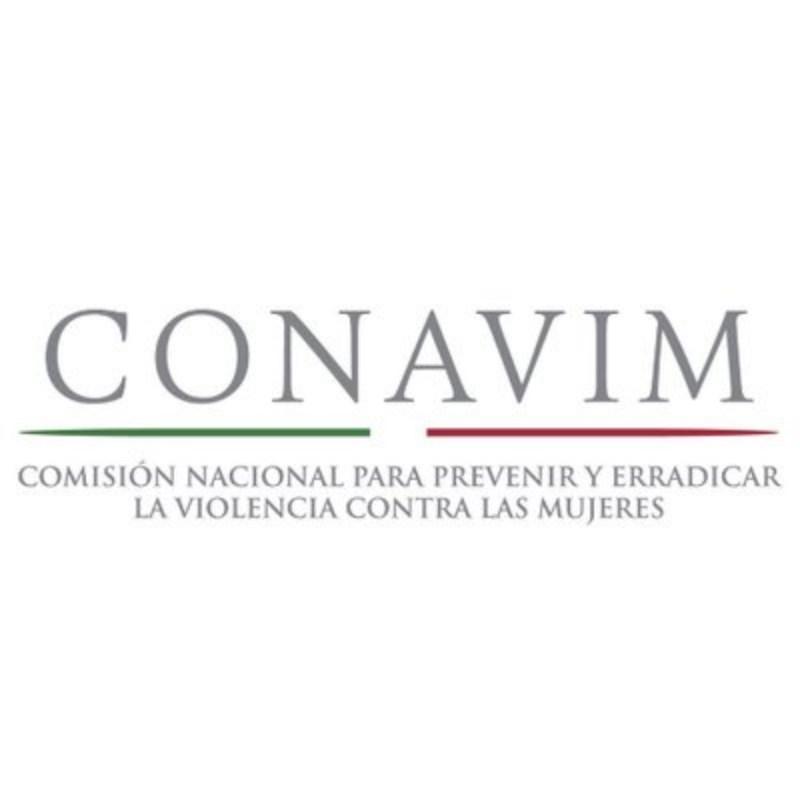 Asistirá la titular de la Conavim ante Comisión a informar sobre la violencia feminicida en el país